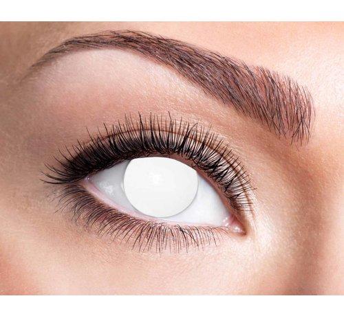 Eyecatcher Blind White | Jaarlenzen