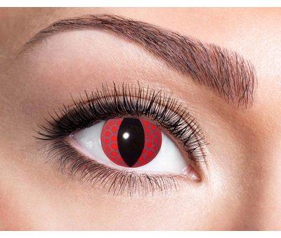 Eyecatcher Red Dragon | Jaarlenzen