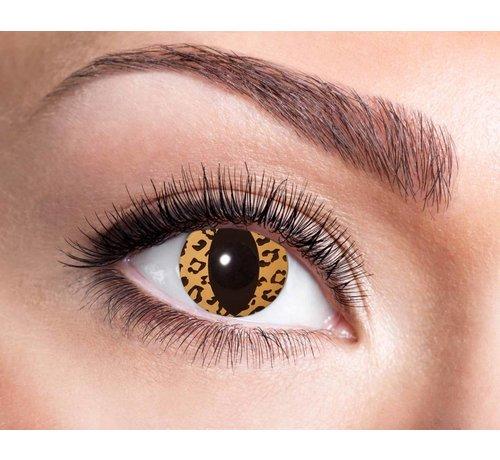 Eyecatcher Leo Cat | Jaarlenzen