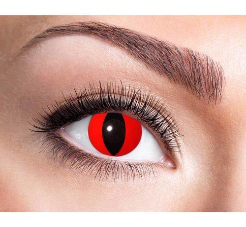 Eyecatcher Red Cat   Jaarlenzen