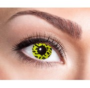 Eyecatcher Yellow Leopard