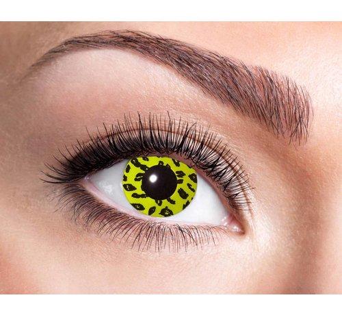 Eyecatcher Yellow Leopard   Jaarlenzen