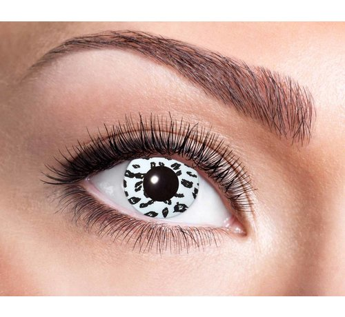 Eyecatcher White Leopard Annual Lenses | White and black annual lenses