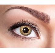 Eyecatcher Gold Swirls | Jaarlenzen