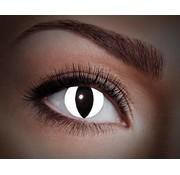 Eyecatcher UV Black Cat | Jaarlenzen