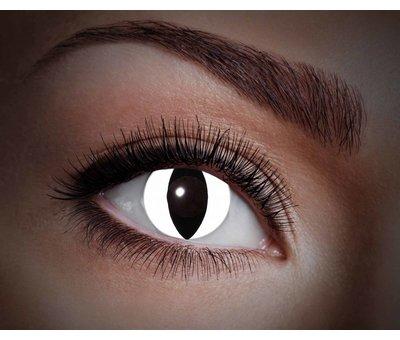 Color lenses Eyecatcher UV Black Cat