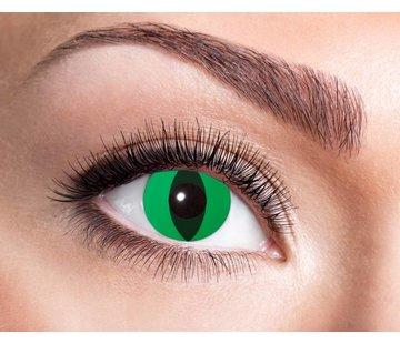 Eyecatcher Anaconda | lentilles de 3 mois