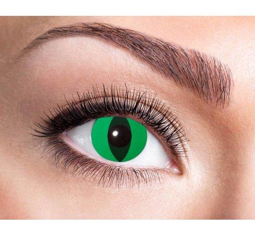 Eyecatcher Neon Cat | Jaarlenzen