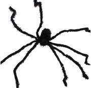 Araignee noir 2m
