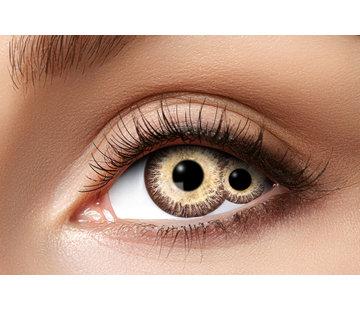 Eyecatcher The Mummy sclera lenzen 22 mm   Twee ogen