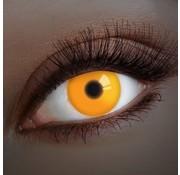 Aricona UV Oranje Kleurlenzen | Jaarlenzen