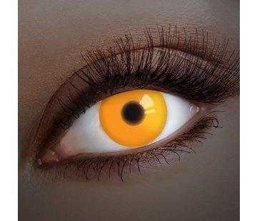 Aricona UV lentilles de couleur Orange  | lentilles annuelles