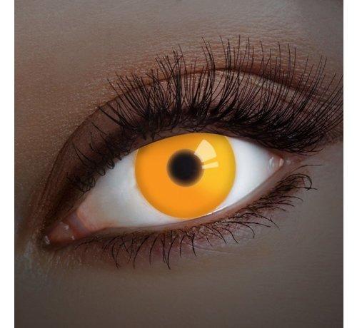 Aricona UV Orange  Colorlens   annual lenses