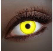 Aricona UV lentilles de couleur Jaune | lentilles annuelles