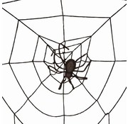 Partyline Spinneweb 2m + Spin LED | Halloween deco