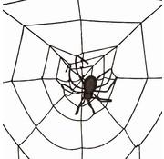 Partyline Toile d'araignée 2m + Spin LED | Déco Halloween