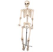 Partyline Skelet op staander | Decoratie skelet 155cm | Halloween decoratie