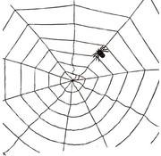 Partyline Spinnenweb zwart 1,5m | Halloween deco
