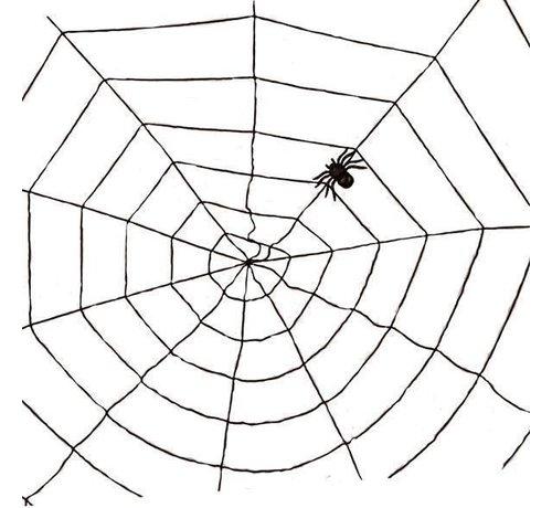 Partyline Spider web black 1,5m | Halloween deco