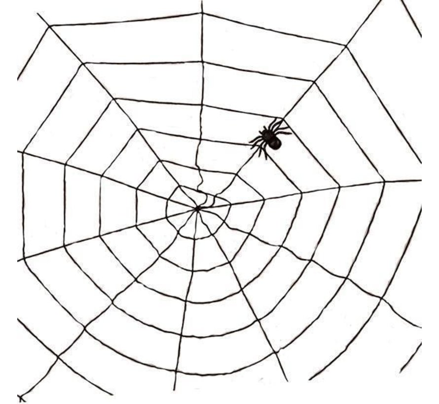 Spider web black 1,5m | Halloween deco