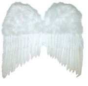 Partyline Ailes blanches 50x42 cm | Ailes d'anges