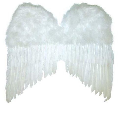 Partyline Witte Vleugels 50x42 cm   Engelen Vleugels
