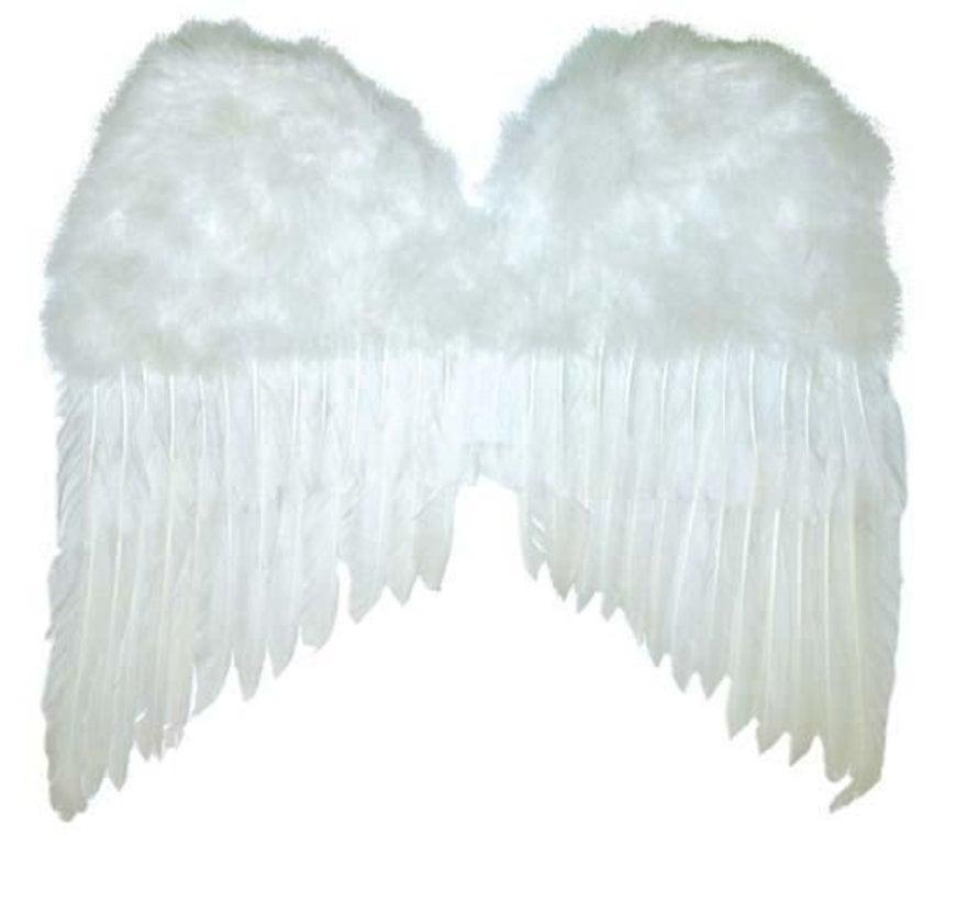 Witte Vleugels 50x42 cm   Engelen Vleugels
