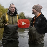 Promotie video Cold Krill