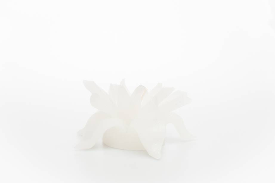 MadCandle Bloemenkaars medium jasmijn