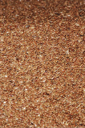 linseed refill 5 kg. 99.9% pure