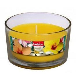 Bolsius kaarsen Outdoor Gevuld glas 82/106 zon