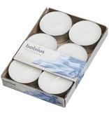 Bolsius kaarsen Fresh linen maxi geur theelicht 8 uur