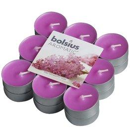 Bolsius kaarsen Parfum de fleur de lilas tea light 4 heures
