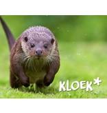 Houtplezier Otter - speelcombinatie
