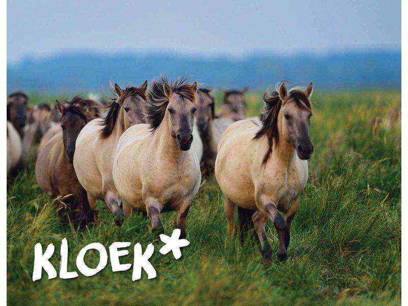 Houtplezier Kabelbaan Paard met bordes