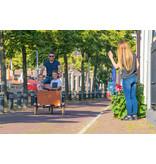 Bakfiets.nl CargoTrike Cruiser Narrow Steps elektrische bakfiets