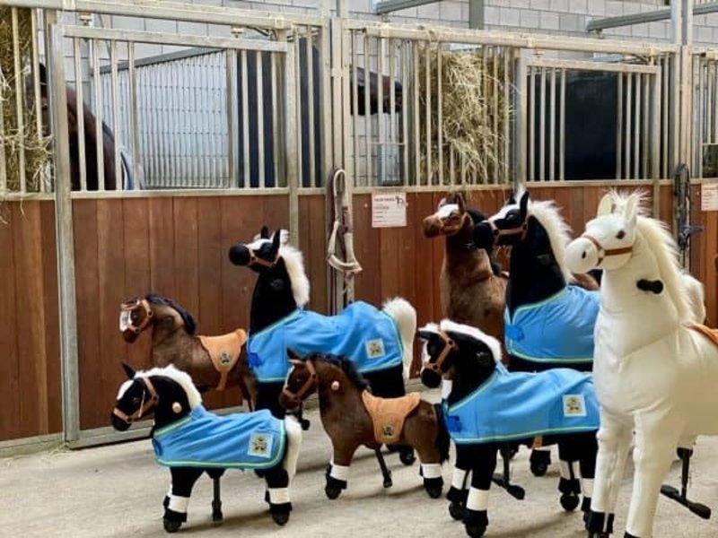 Animal Riding Deken voor mini / XS dieren blauw met Logo