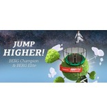 BERG Trampoline Champion Regular 380 + Safety Net Comfort Groen