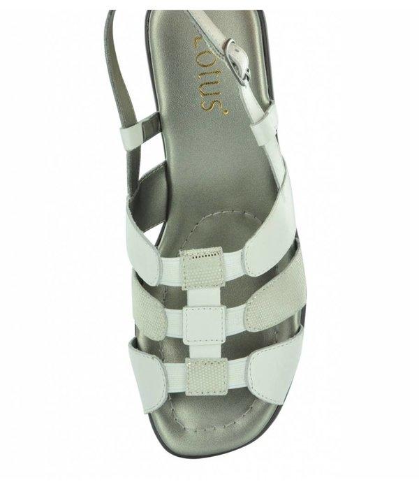 Lotus Lotus Lantic 20142 Women's Comfort Sandals