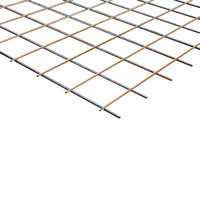 Bouwstaalmat PS196a Ø5-100 2 x 3 meter