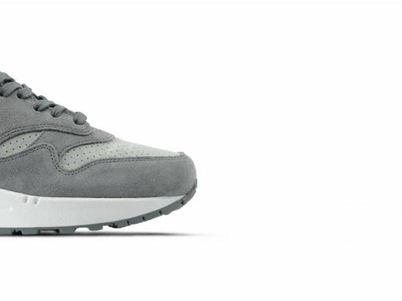 Air Max 1 Premium Cool Grey Wolf Grey White 875844 005
