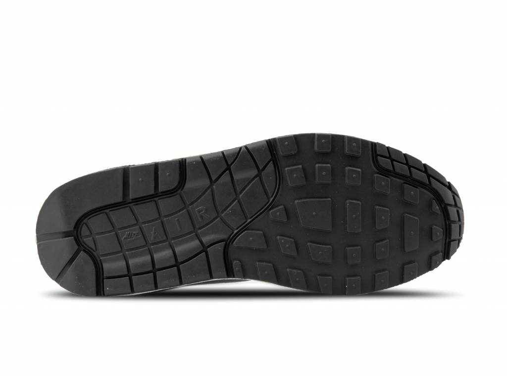 Shoes NIKE Air Max 1 AH8145 011 Vast GreySailSailWolf Grey