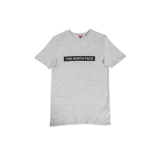Light Tee TNF Light Grey Heather NF0A3S3ODYX1