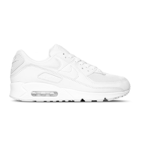 Air Max 90 White White Wolf Grey CN8490 100