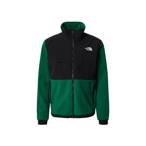 Denali 2 Jacket Evergreen NF0A4QYJNL1