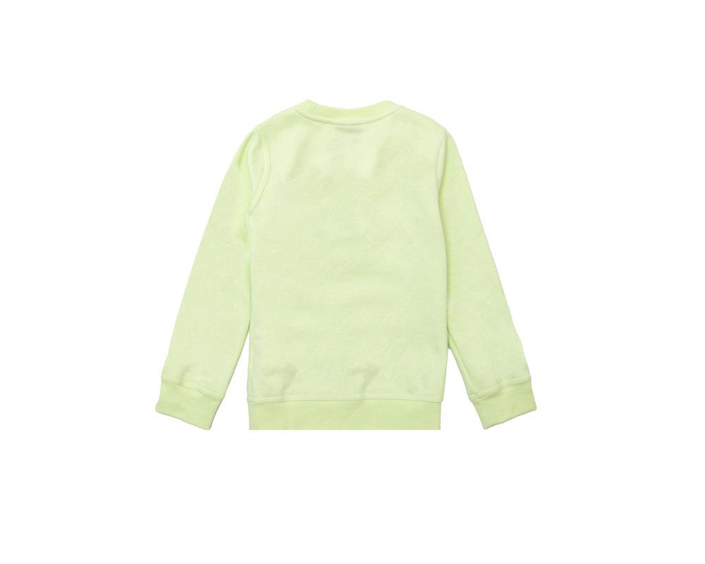 Nike Sportswear Club Fleece GS Crewneck LT Liquid Lime CV9297 383