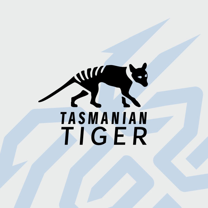 Tasmanian Tiger Tactical Gear