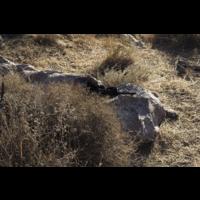 Rajuga Sniper Kit-TVC100 Multi-Spectraal