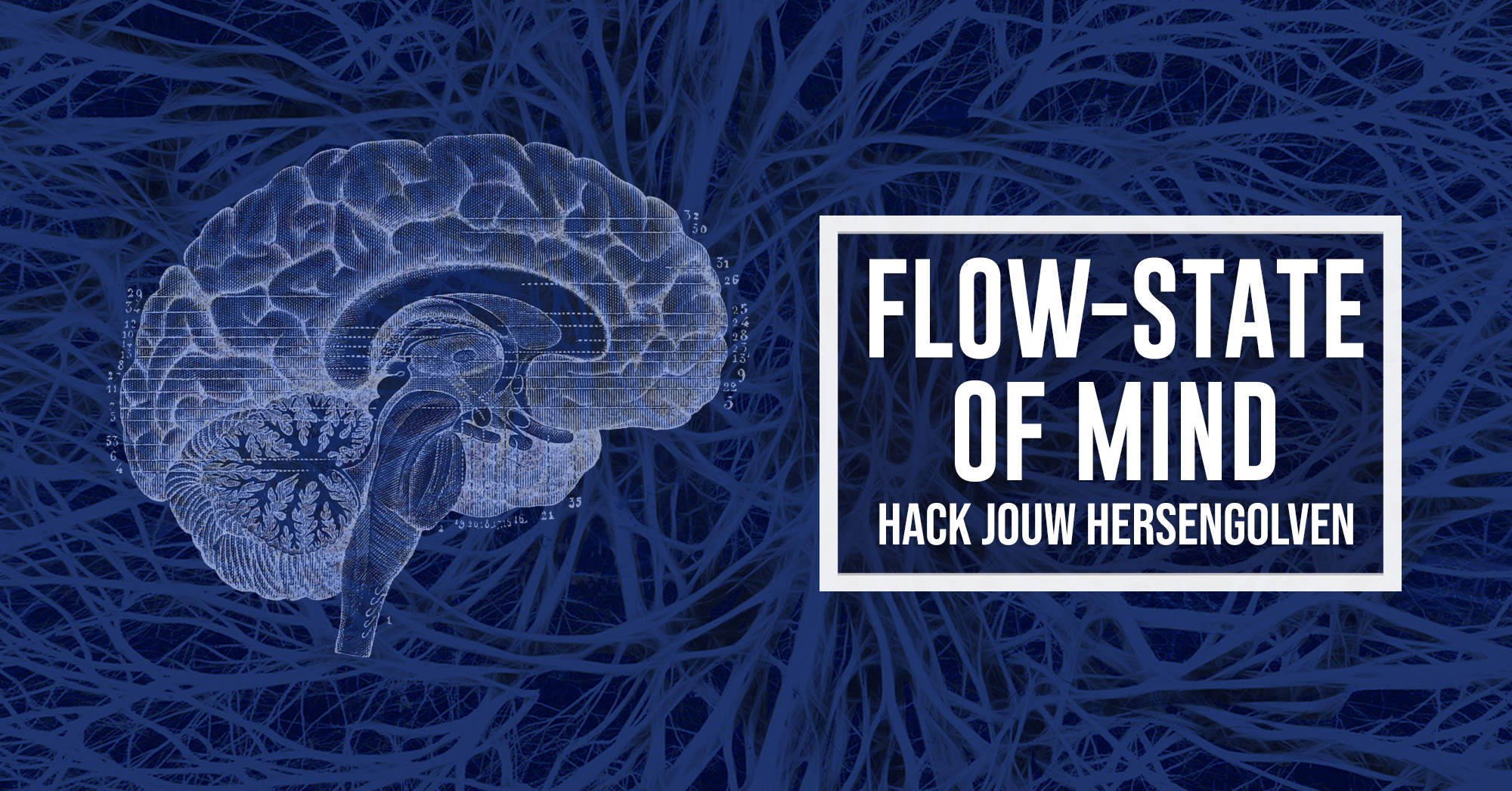 De Flow State of Mind | hack jouw hersengolven