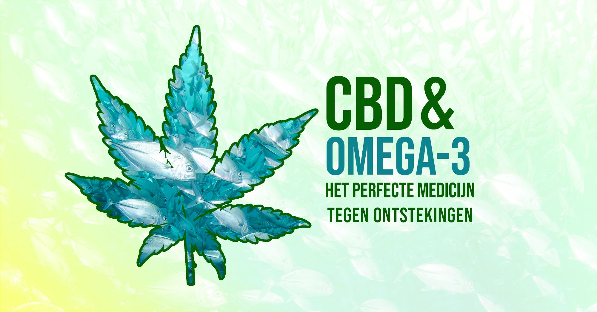 CBD en OMEGA-3 - Het perfecte medicijn tegen ontstekingen